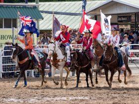 International, Australia & Warwick Rodeo Queen