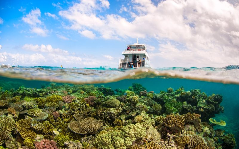 Waves 4 Underwater