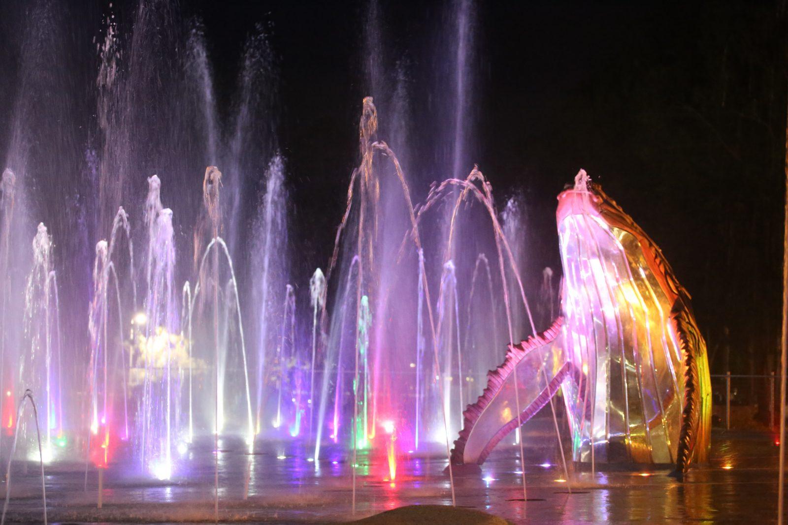 WetSide Light Show Spectacular