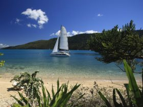 Whitsunday Escape Skipper Yourself Bareboat Charters