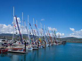 Whitsundays Clipper Race Carnival - Clipper Yachts Open Days