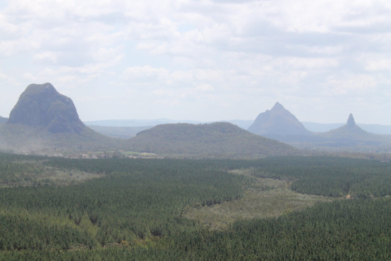 Glasshouse Mountains from Wild Horse Mountain Lookout Tower