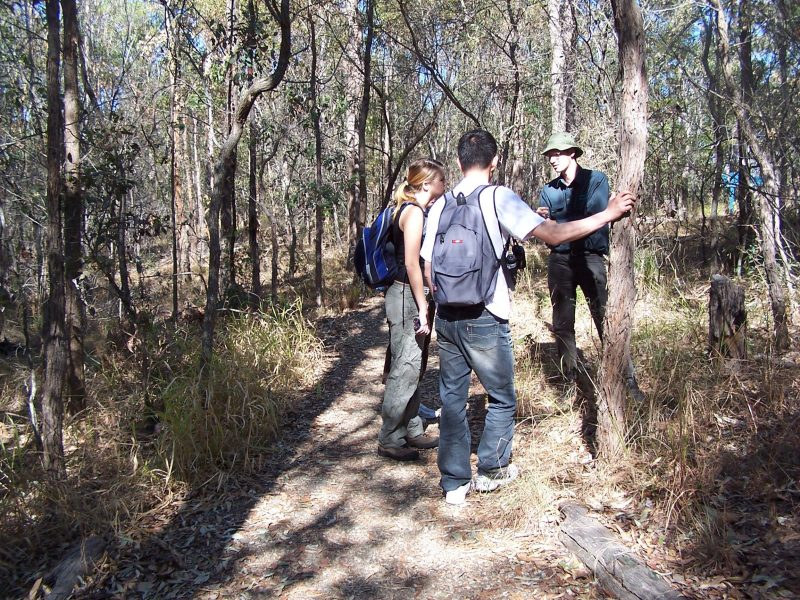 The conference venue is the Nathan campus of Griffith University, set within Toohey Forest