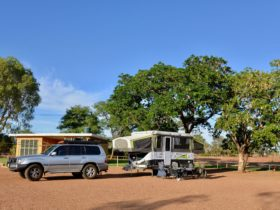 Treed surrounds at Windorah Caravan Park