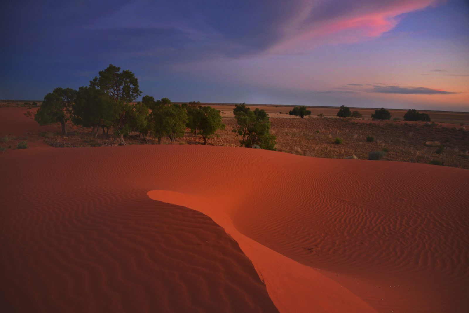 Sando's Sandhill 12 kilometres west Windorah