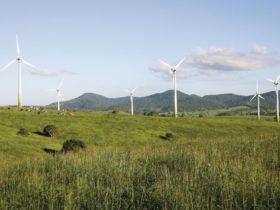 Windy Hill Wind Farm, Ravenshoe