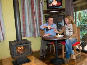Couple enjoying portwine & cozy wood fire