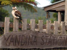 Yandina in the Sunshine Coast Hinterland