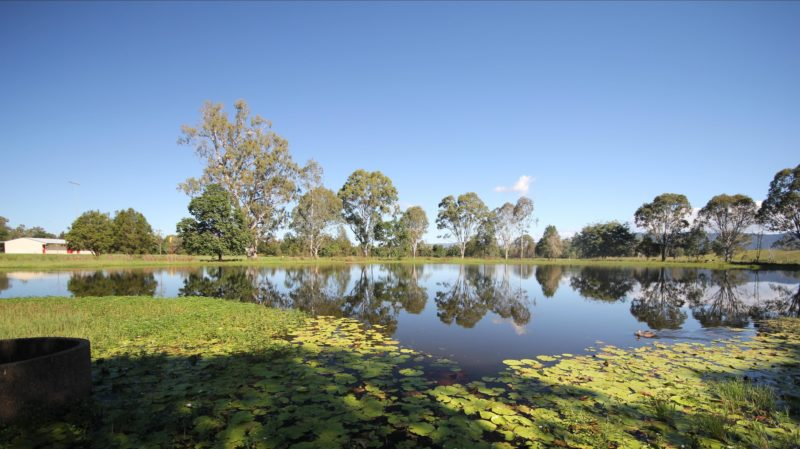 Lake Fred Greensill, Yowie Park