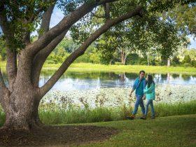 Kilcoy Yowie Park, Kilcoy, Somerset QLD