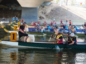 Follow the beat of the drum! Masters Dragon Boaters have the rhythm!