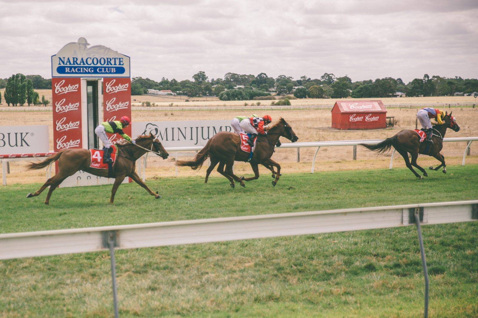 2019 Naracoorte Cup