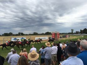 37th 36° South Coonawarra Vignerons Cup Race