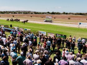 Port Lincoln Cup