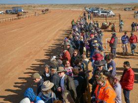 Onlookers awaiting the next Camel race