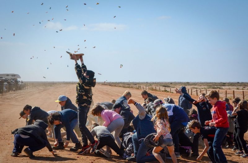 Children scrambling at the Camel Cups Lolly Toss