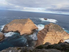4WD Aussie Swagabout Tours - Eyre Peninsula