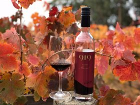 Classic Muscat in the 919 Wines vineyard, bottle and glass