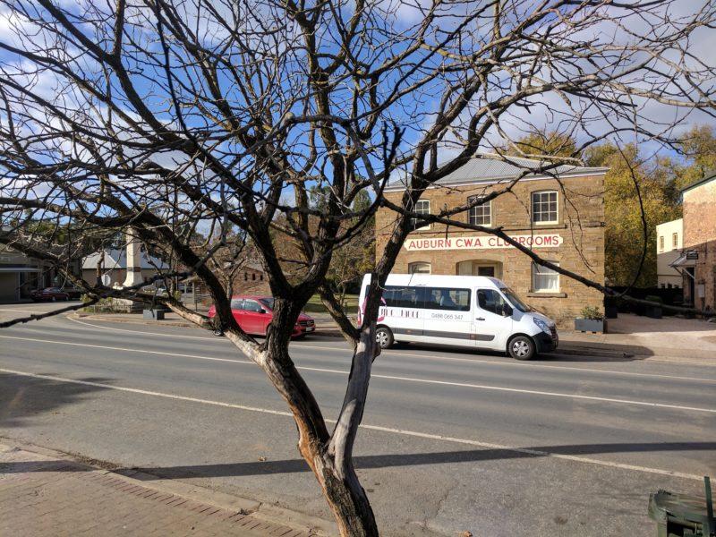 Auburn street view