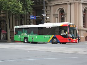 Adelaide transport free bus
