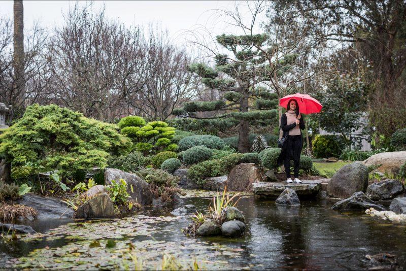 Tranquil, peace, garden, walk, Japanese, Sister City, pond, rainy day, umbrella