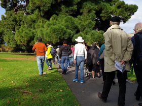 One of our guided walks in the Adelaide Park Lands