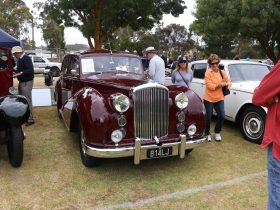 1954 Bentley Mk VI