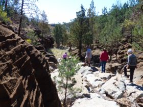 Blinman Pools Guided Walk