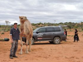 Kim Geue and Bubbles with the Alpana vehicle for a camel trek transport.
