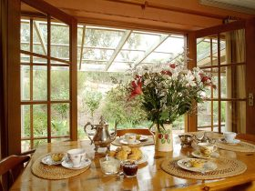 Ancient gums keep watch over you while enjoying breakfast and the cottage garden