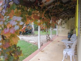 Amy's House Verandah