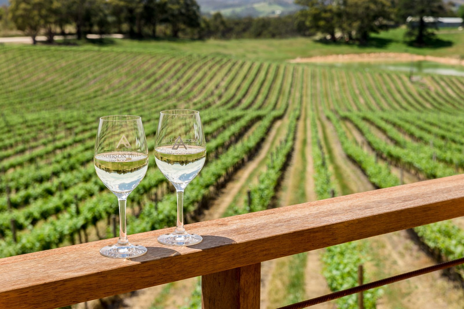 Anderson Hill White wines