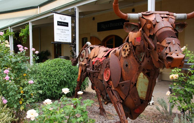Meet Dobo the Bull at the entrance to the Cellar Door at Rolf Binder