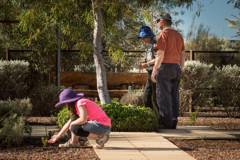 Australian Arid Lands Botanic Gardens