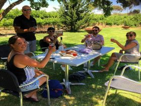 Relaxed lunch at cellar door