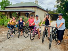 Group delivery in Angaston