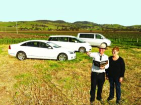 Barossa Tour vehicles