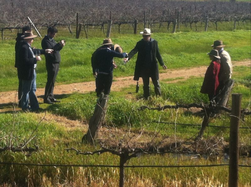 small group vineyard tours