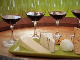 Regional red wines are matched beautifully with a selection of cheese