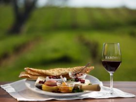 Barossa wine and food