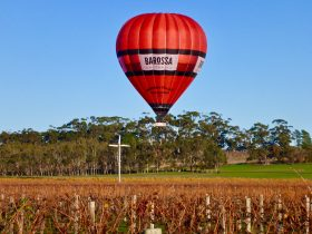 Ballooning over the Barossa