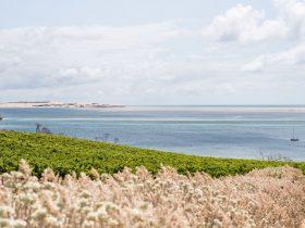 Bay of Shoals Beach