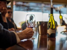 wine tasting at balnaves
