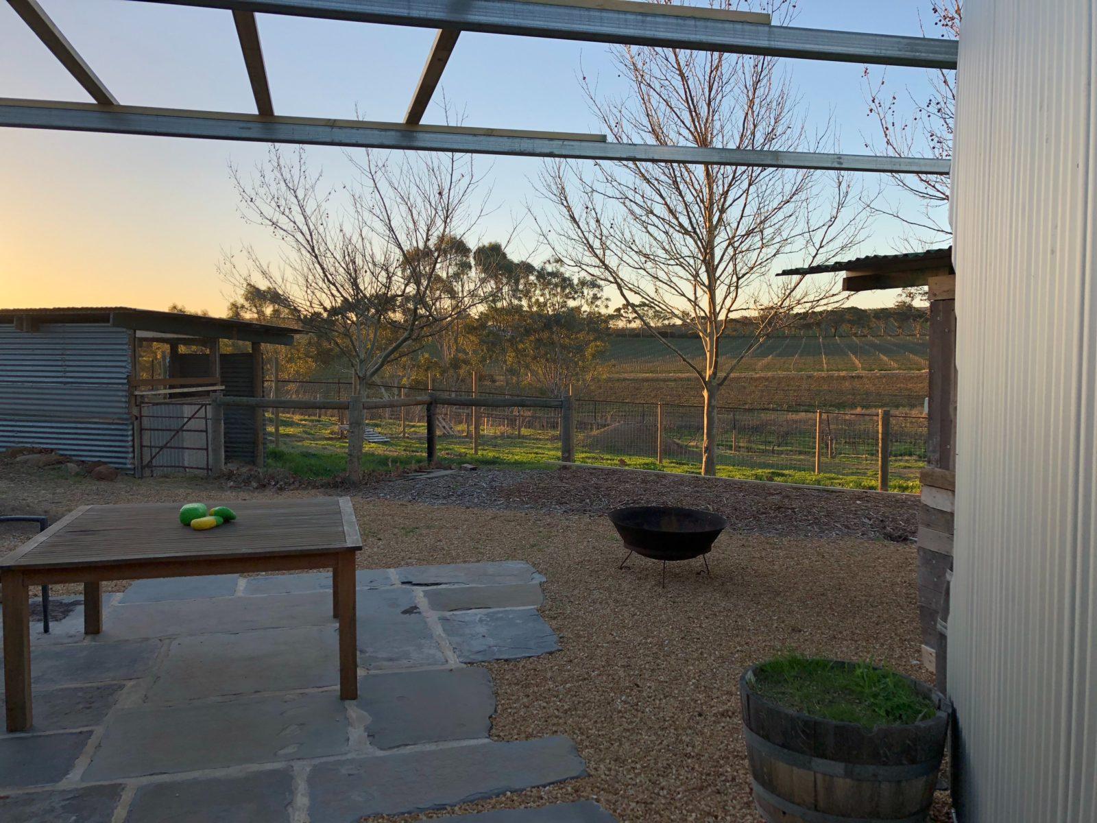 Relaxing Vineyard Views