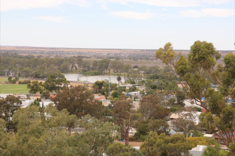 View from Berri Lookout Tower
