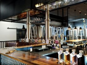 bar, gin drink, beer taps,