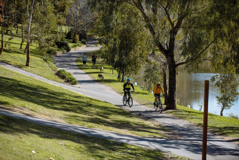 Nature, bushlands, cycling, trails, walking, river, torrens, dogs, paths