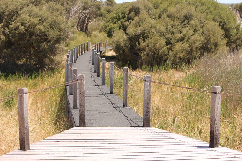 bool-lagoon-boardwalk
