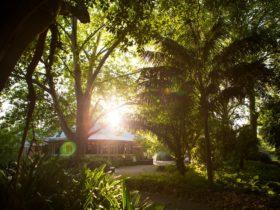 Exterior of Botanic Gardens Restaurant Adelaide