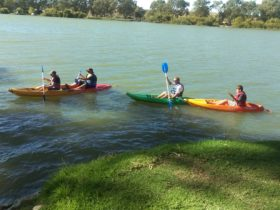 Canoe Hire at Mannum